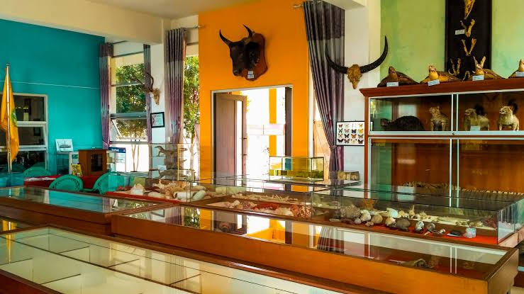 Museum Zoologi Frater Vianney