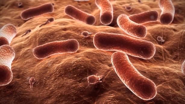 5 Jenis Penyakit Yang Menular Wajib Dihindari