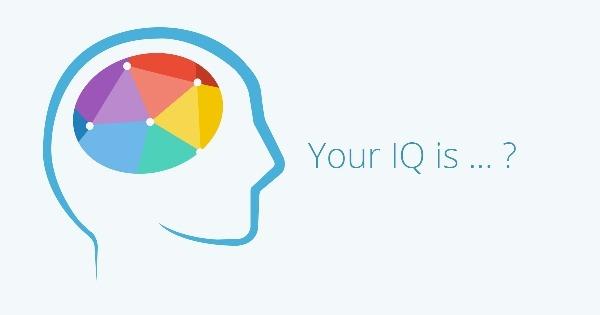 Kebiasaan Sederhana Yang Dapat Meningkatkan IQ