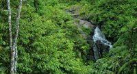 Air Terjun Watu Jadah Jatipurno, Wisata Spiritual dan Santai