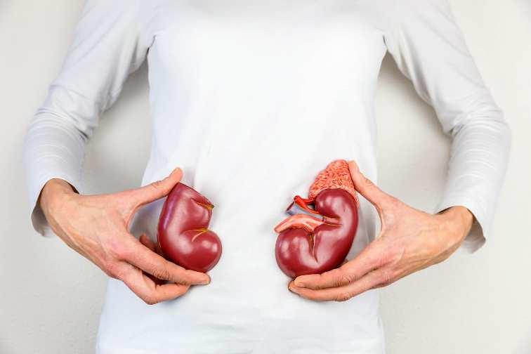 Menjaga Kesehatan Ginjal Dengan Mengkonsumsi Makanan Sehat