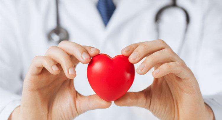 Obat Penurun Kolesterol
